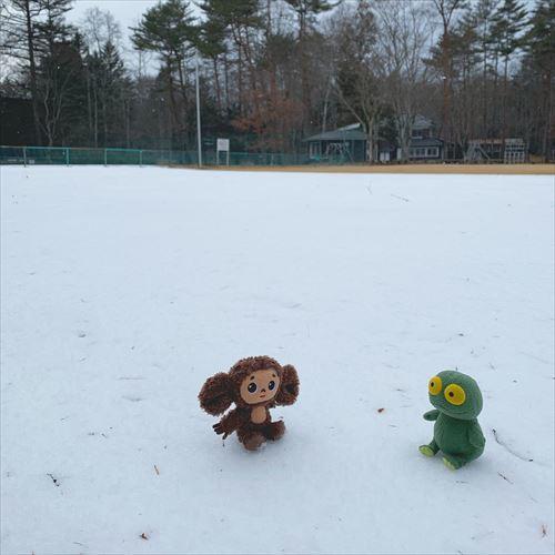 ゆうブログケロブログ軽井沢2019冬 (68)