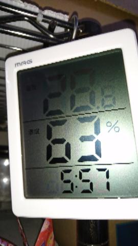 温度計5月31日