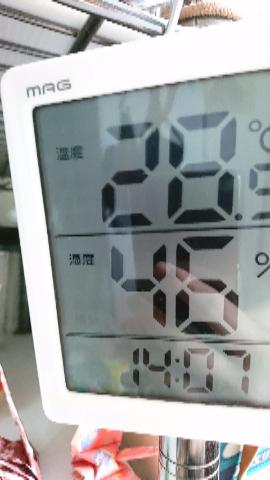 温度計6月29日