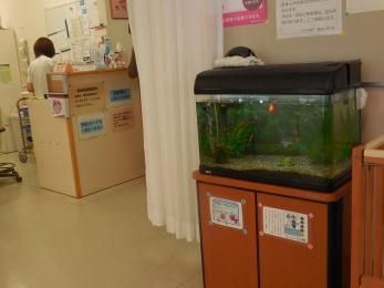 2017-10 千代診療所 (4)