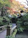 京都・瑠璃光院