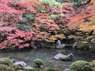 京都・蓮華寺