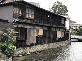 京都・白川