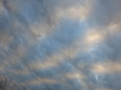 171120-11=白水色ストライプ雲fm前庭