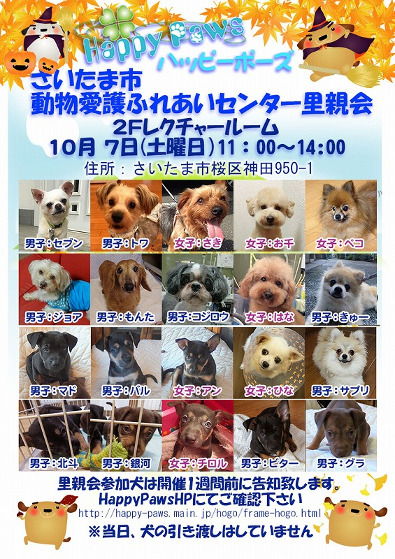 s-ふれあいセンターdog (1)