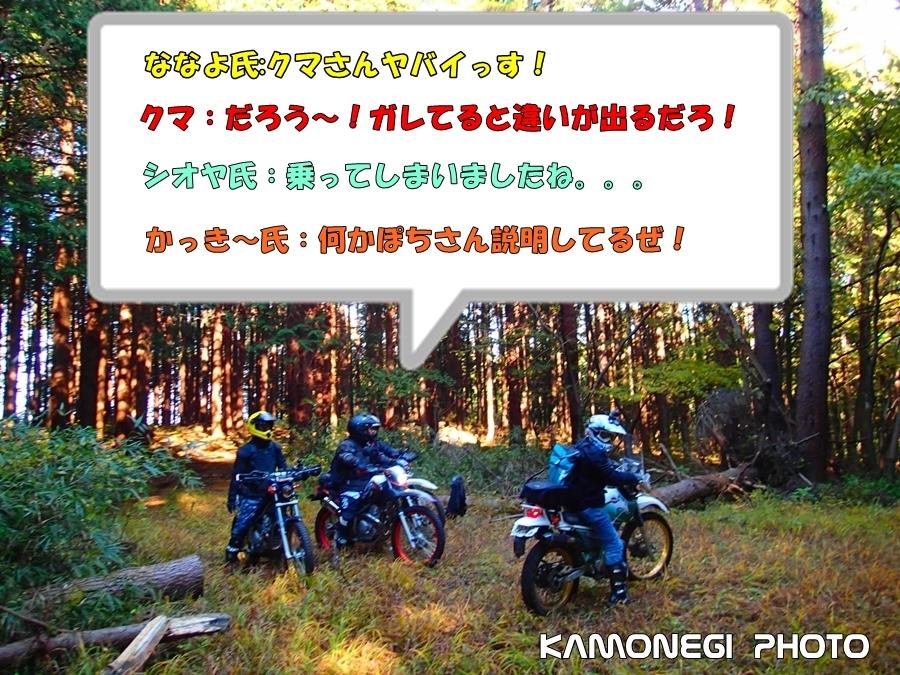 171107K002aa_2017110819344888f.jpg