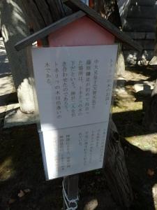 P8190504 湊稲荷神社