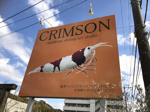 crimson8-1.jpg