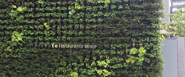 コーポラティブハウスと緑化4