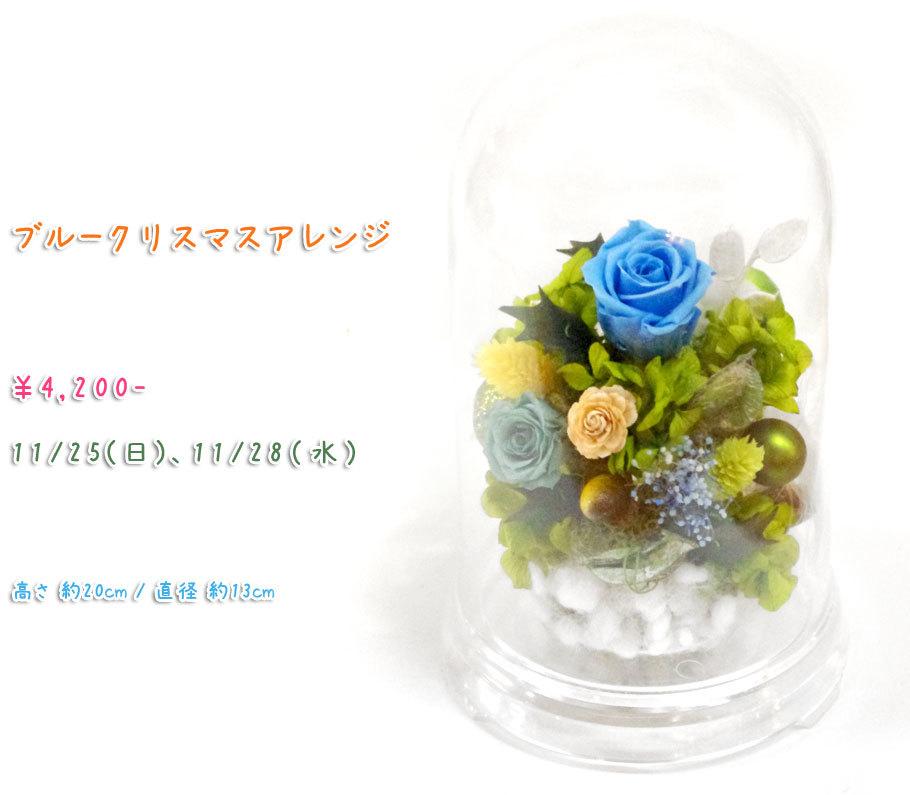 p_flower_201811.jpg