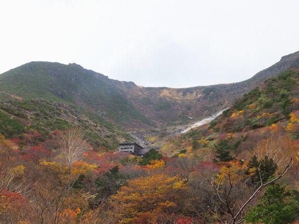 2018adatarayama-kouyou55-web600.jpg