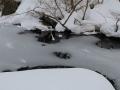 2019gosikinuma-hatu-snowsyu73-web600.jpg