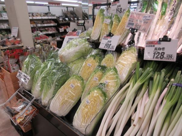白菜、ネギ