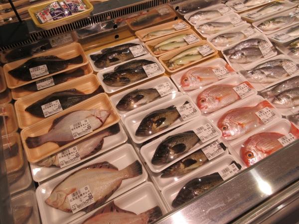丸々1尾鮮魚