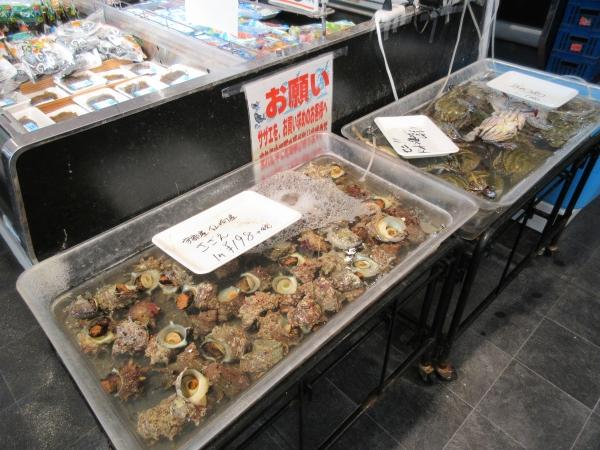 鮮魚サザエ