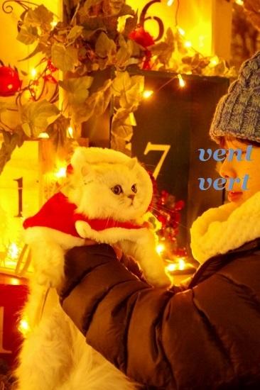 2018クリスマス1