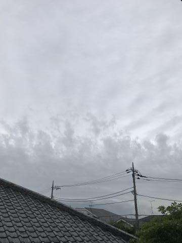 2017-05-25.jpg