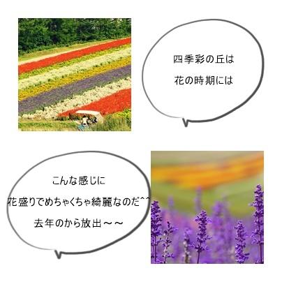 秋page