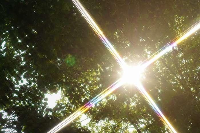 DSC07140太陽