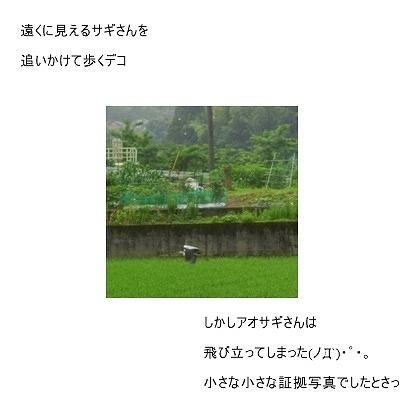 あおさぎpage