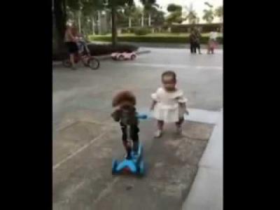 【笑える!】赤ちゃん相手に意地悪なプードル!