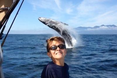 【スゴイ!】クジラとのベストショット!中々撮れないね!