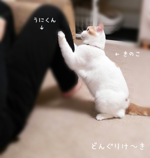2017102903.png