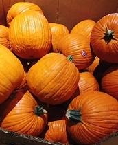 かぼちゃ大
