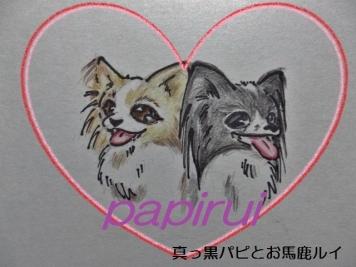 papiruiちゃん