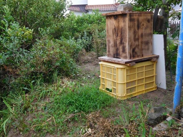 ミツバチ巣箱2907