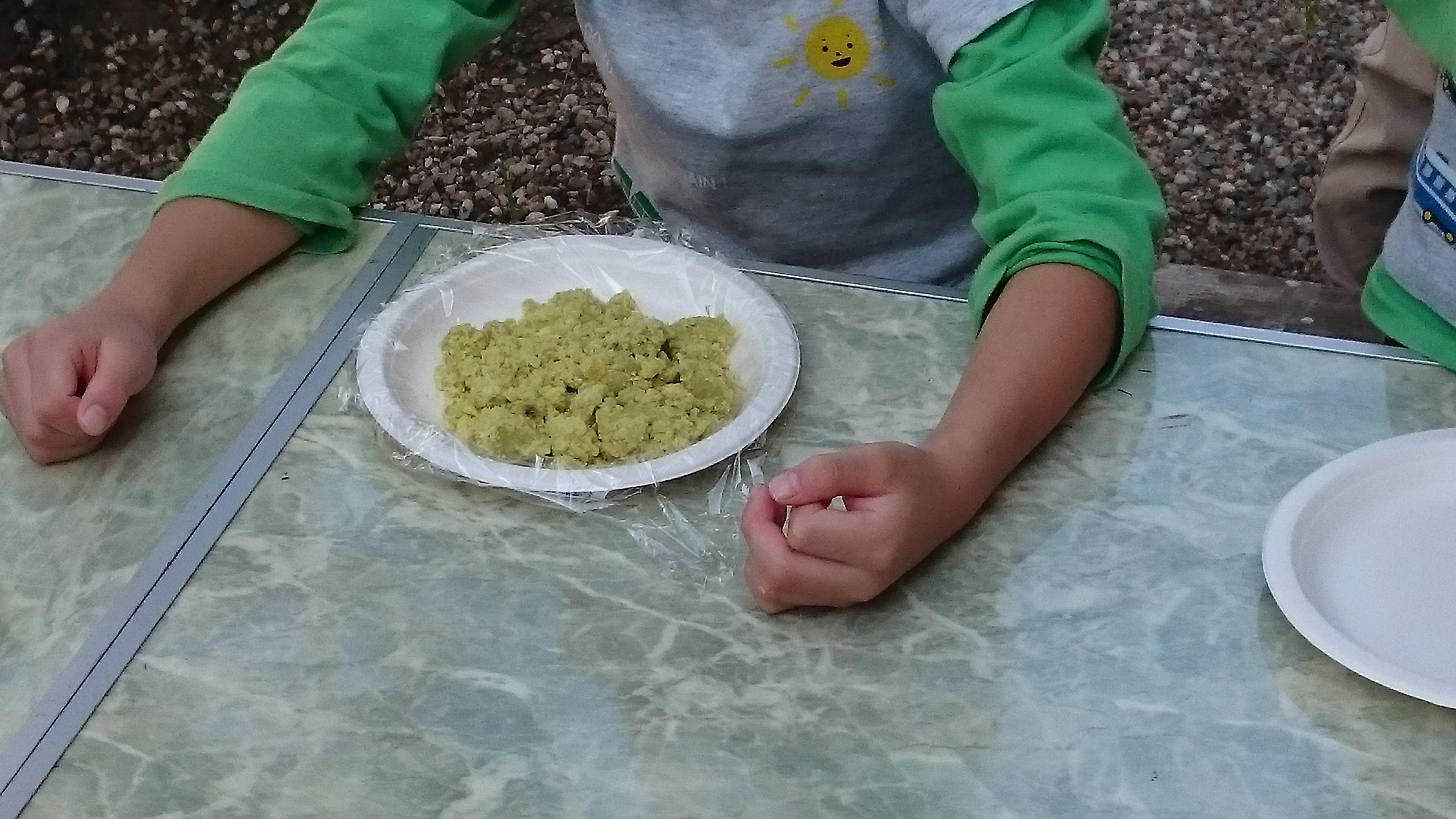 芋集会 芋きんとん作りかけ