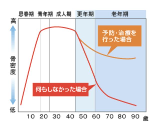骨量グラフ