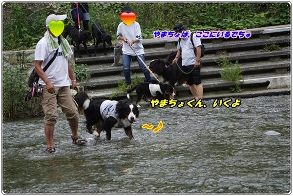2017-9川遊び1