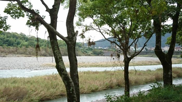 越知町 仁淀川台風の爪痕