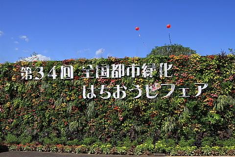 34ztrhf1