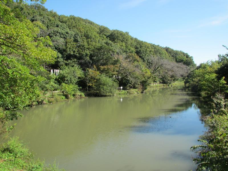 三井山4池