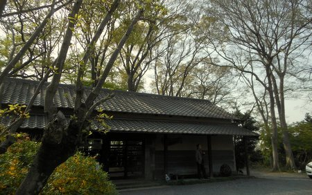 kogirohi04.jpg