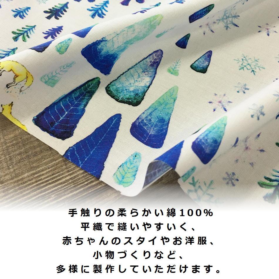 商品ページ用-northFOX-2