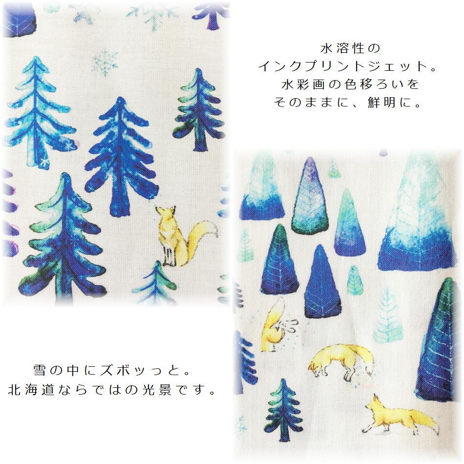 商品ページ用-northFOX-3