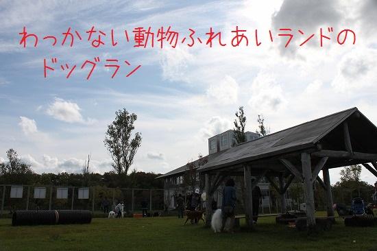 7IMG_0285.jpg