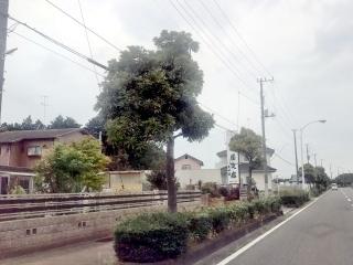 森田屋支店 太田店 (1)