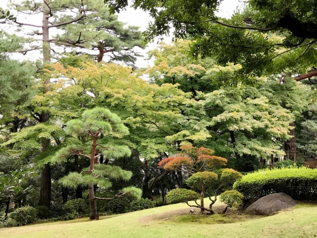 殿ヶ谷戸庭園 (5)