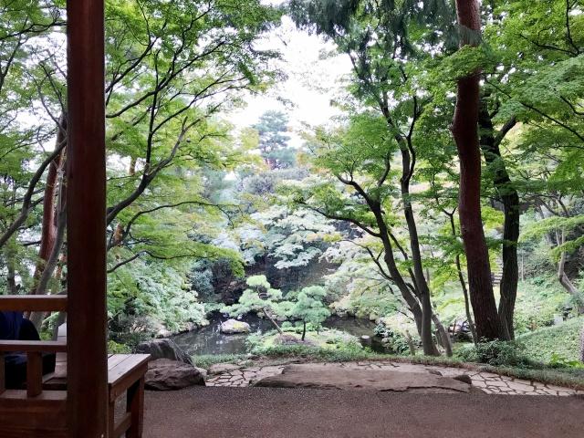 殿ヶ谷戸庭園 (10)