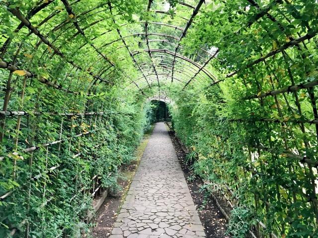 殿ヶ谷戸庭園 (24)