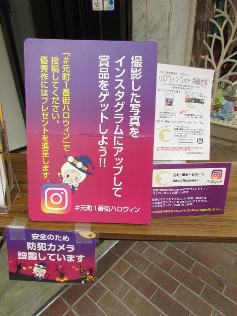IMG_8744_20171027191101dc9.jpg