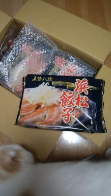 浜松餃子と食いしん坊