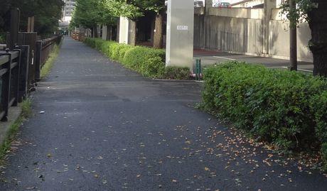 9月18日台風が通過した朝