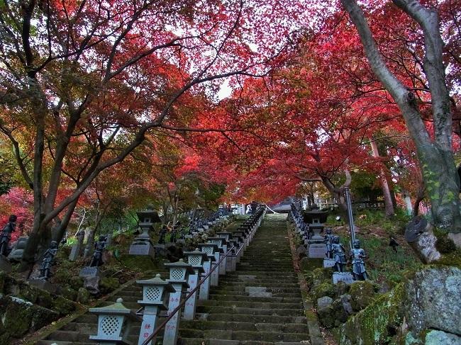 20171115大山寺参道階段のもみじ
