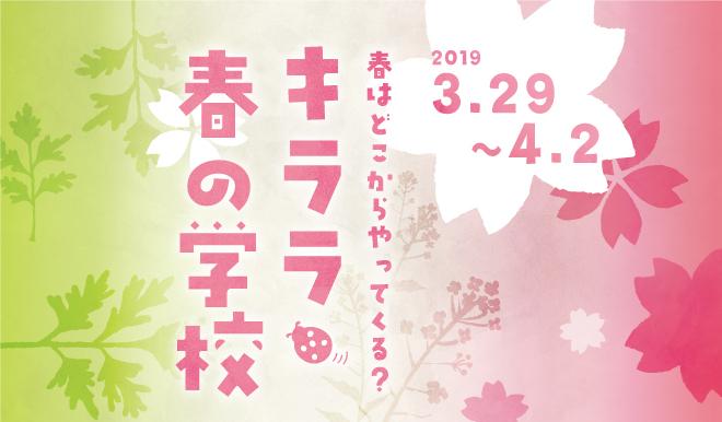 KIRARA_spring2019_0221.jpg