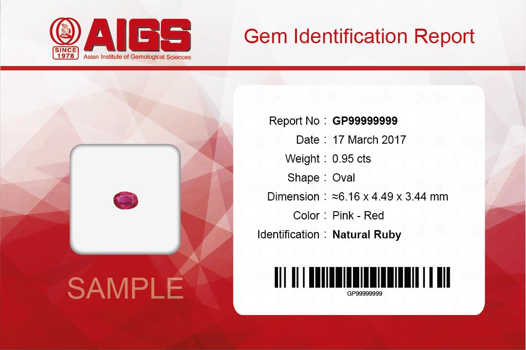 AIGS-MiniReport1-0.png